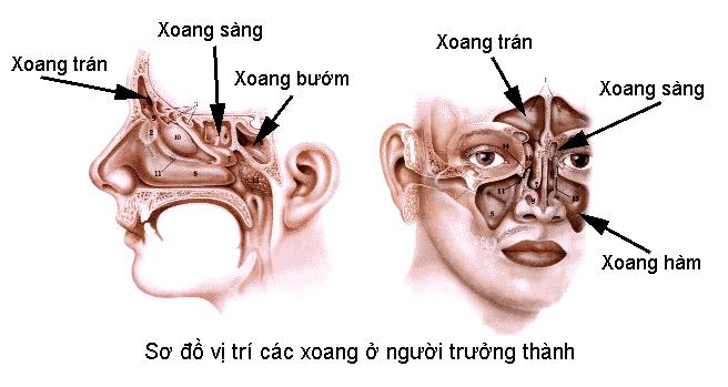 phau-thuat-noi-soi-xoang-ham-1