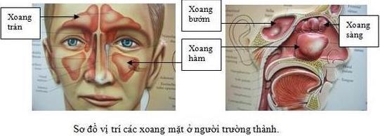 xet-nghiem-can-lam-sang-viem-xoang-buom-1